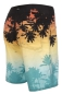 Mobile Preview: O'Neill - Tropicool Boardies