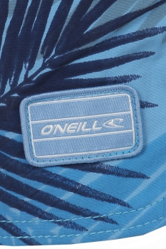 O'Neill - Thirst for Surf Shorts
